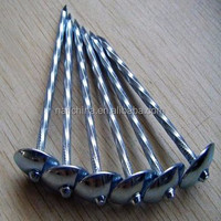 Screw Shank Galvanized Umbrella Head Roofing Nail
