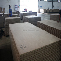 Top factory 28mm trailers flooring plywood for containers with FSC certificate