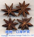 6-1 star aniseed(spice)