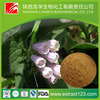 8 Years Experience Supply Shikone P.E/Radix amebiae extract/Radix lithospermi root extract