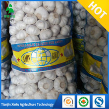 Chinese Fresh Garlic normal white