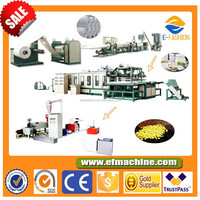 E-Fashion Disposable Plastic Food Container Making Machine