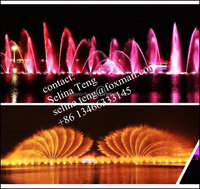project of large musical dancing water fountain on lakes/digital moving musical water fountain show