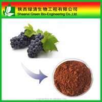 100% Natural Grape seed P.E. Polyphenol and Proanthocyanidins