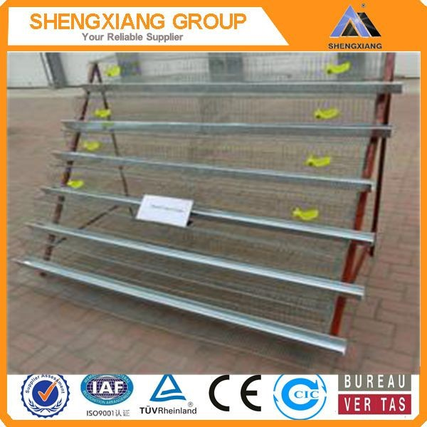 China newly design in the market animal cage/bird cage/quail cage