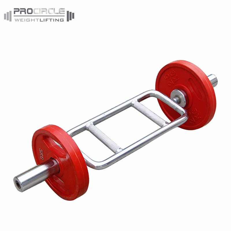 Training Standard Weight Lifting Bar