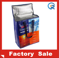 Factory price insulate promotion pp non woven beer cooler bag