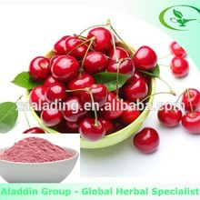 Top[ quality acerola cherry extract powder, natural vitamin c powder bulk