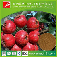 Factory supply hawthorn berry/leaf extract