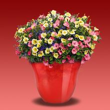 Balcony planter plastic plant pots wholesale,cheap plastic flower pots,color pp plastic planters