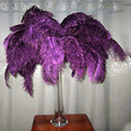 Purple colour ostrich feathers for wedding decor