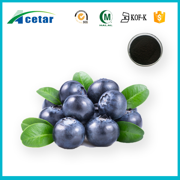 Natural plant extract Eye Protection bilberry extract benefits