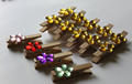Wooden Pegs with decorative Gems