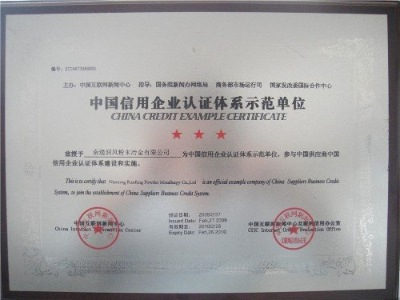 China Credit Example Certificate System