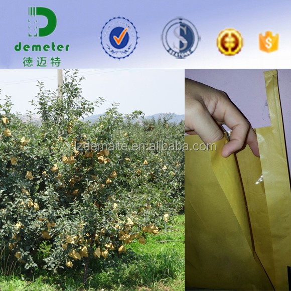 Custom Size UV resistant shrink resistant Waterproof Mango Paper Bag For Fruit Grow