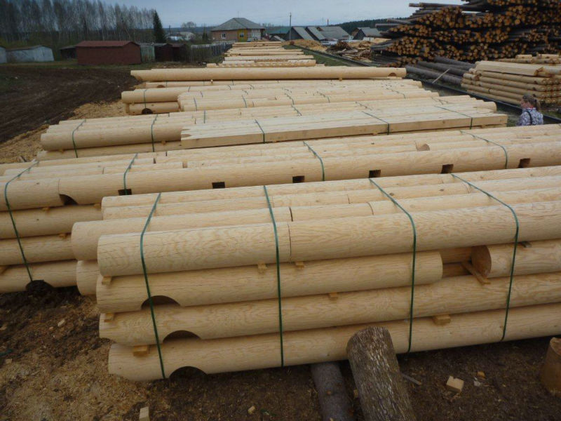 Timber wood and logs