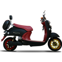 24 months Warranty OEM factory 800w electric Motorcycle/Max Speed 60Km electric scooter/electric bike
