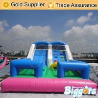 Outdoor China Inflatable Toboggan Slide Water Slide Inflatable
