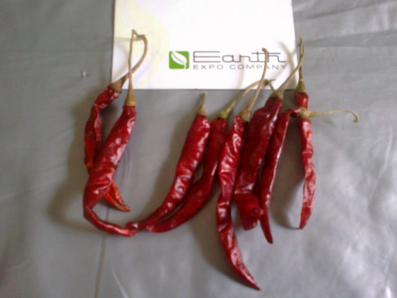 BIRD EYE CHILLI