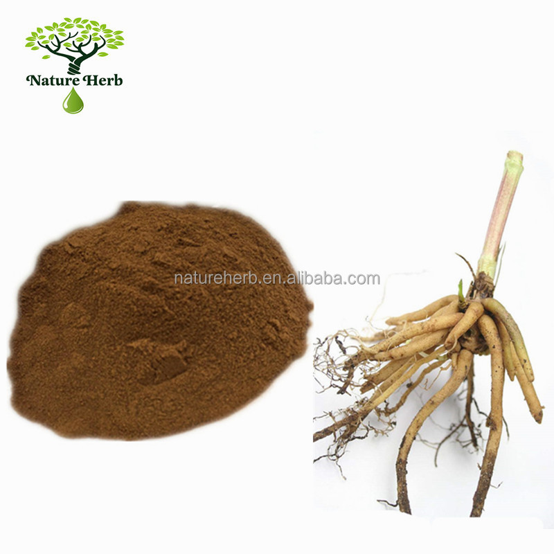 Best Selling Fight Against Bacteria 10:1 Valerian Root Extract