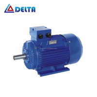 Electric Y2 Series 3 Phase Ac Induction Motor