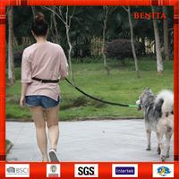 Hands Free Retractable Bungee Walking Jogging Running Pet Dog Leash/Lead