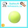 Outdoor Sports Durable Dog Toy Ball
