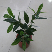 artificial Osmanthus tree leaves grass for fake tree making decoration plant wall