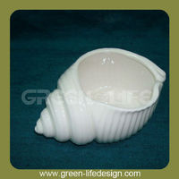 White porcelain decorative sea shell