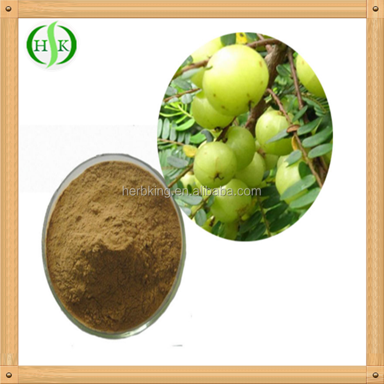Wholesales natural 100% organic freeze dried fruit powder amla