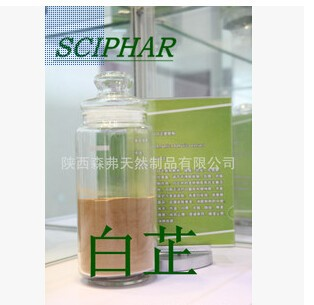 ISO Certificated Natural Dahurian Angelica Root Extract