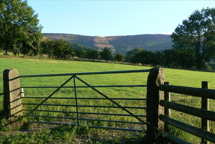 Cheap Galvanized Farm Gates And Steel Fence Design Buy