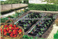 black mulch film for strawberry and pineapple