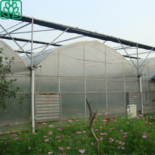 strawberry vegetables Use 100x8m Agricultural Plastic film Poly Tunnel Greenhouse for Sale