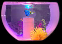 LED pespex fish aquarium for house decoration Transparent boat shape acrylic toy fish aquarium