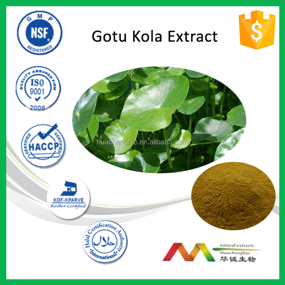 Hot Product Gotu Kola Extract