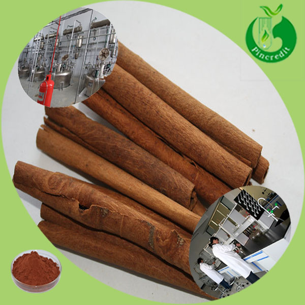 Cinnamon Price,Cinnamon Oil Extract,Cinnamon Bark Extract