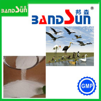 animal medicine safe antibiotics for animal high quanlity gmp veterinary medicine poultry medicine feed additive