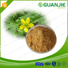 Factory Supply Natural Cat's Claw Extract,Harpagide 3.5%