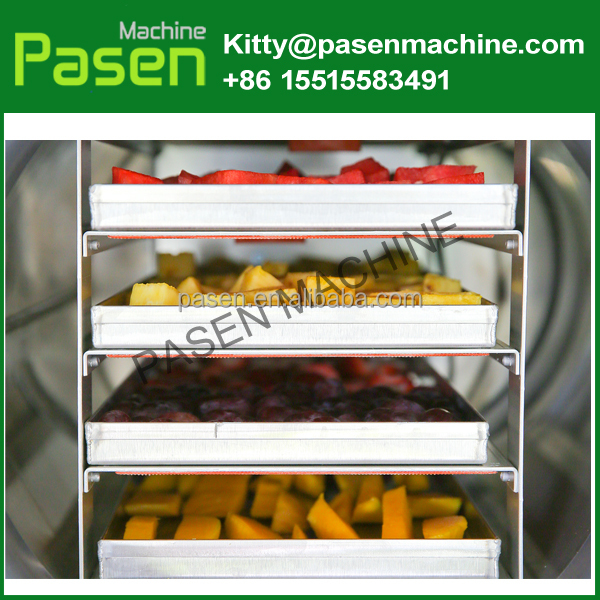 Portable Home freeze dryer | Vacuum drying machine | Vegetable dryer