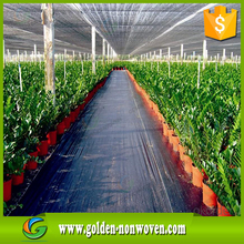 Spun bond non-woven plant winter cover,polypropylene nonwoven landscap/garden protection cover, winter nonwoven fabric cover