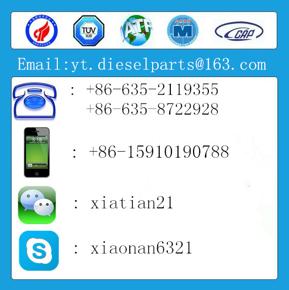 good quality all size grease seal,oil seal
