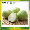 instant dried fruits Freeze dried guava with made in China