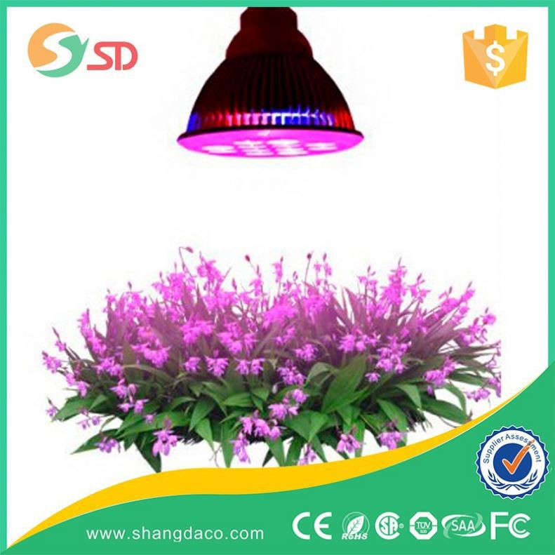 hot sale low price round socket indoor plant spectrum king led grow light