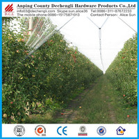 Chinese manufacturer Anti hail systems/ 100% new HDPE apple tree anti hail net