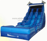 Used Big Water Slides For Sale / Double Lane Water Slides Prices
