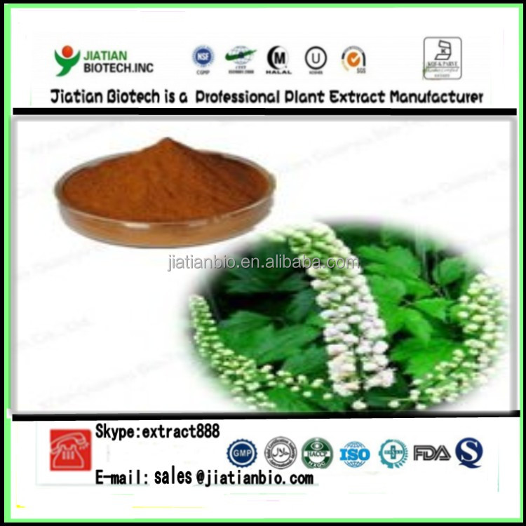 100% pure nature Actaea Racemosa Extract/ Black cohosh powder