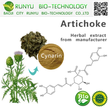 CAS 30964-13-7 artichoke extract cynarine competitive artichoke prices