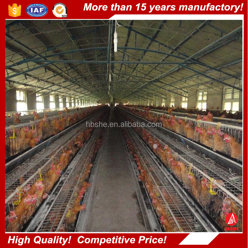 low cost industrial shed steel structure building design poultry farm shed chicken house for layers