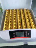 CE marked cheap automatic 48 eggs incubator thermostat for sale